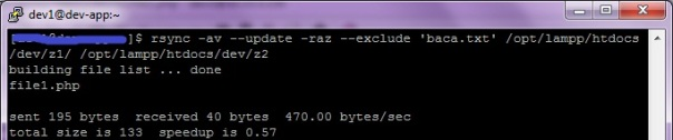rsync new modified file only